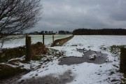 Footpath through snow covered fields