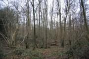 Horeman's Wood