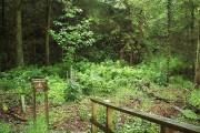 Entrance to Aldouran Glen Wood