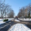Gosport under snow - Walpole Road (2)