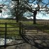 Gate and driveway, Bromesberrow