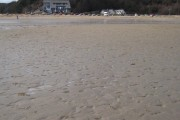 Maenporth Beach on a low spring tide