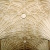 St Mary, Ottery St Mary, Devon - Roof