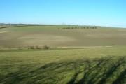 Farmland near Little Weighton