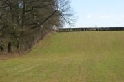Farmland, Eppleworth