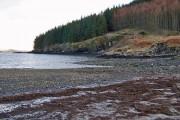 Beach at Loch Bharcasaig