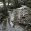 River Drone