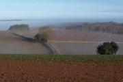 Farmland near Folly Farm