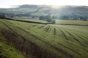 Farmland above the Culvery