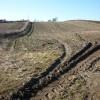 Stubble field near Home Farm