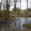Small pond on Mere Brook