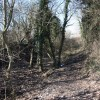 Disused Chesterfield Canal