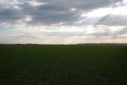 The flat landscape of the Romney Marshes (5)