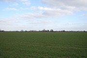 The flat landscape of the Romney Marshes (7)