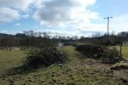 Field near Stonebridge Farm