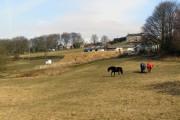 Mawkin Farm