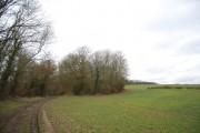 Footpath entering Weir Field Shaw