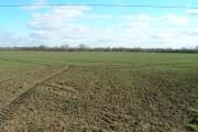 Farmland near Bulcote