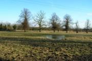 Flooded Farmland, Gonalston