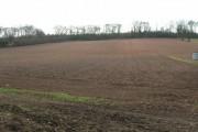 Farmland North of Ploughman Wood