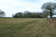 Farmland near Hagg Cottage