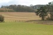 Nether Field Farmland