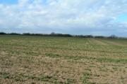 Farmland near Stubbins  Farm