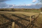 Field near Roselath
