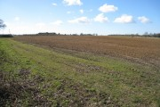 Fields near Wasing Farm