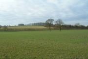 Farmland near Tophouse Farm