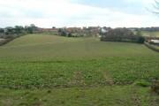 Farmland, Blidworth