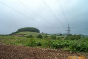 Near Woolston Green - South Devon