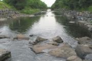 The River Amman