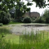 Village pond with village hall in the background