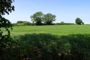 Farmland north of Akeman Street