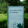 Wheeldon Mill woodland