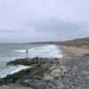 Barton on Sea: groyne, beach and cliff