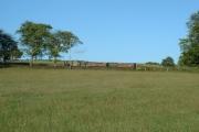 Blakelow Hill