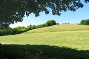Hill near Bozedown