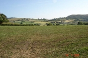 Fields near Trelawnyd