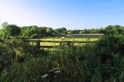 Farmland and Paddock near Tadley