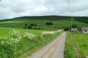 Carnieston Farms