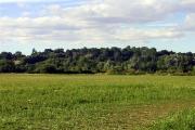 Farmland south of Woolhampton
