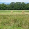Haymaking, Marchbank