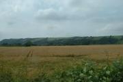 Farmland, Lune Valley