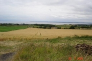 Wheat fields and Dee estuary