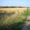 Bury to Clare walk at Thurston