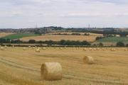 Lower Park Farm