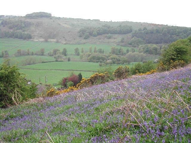 Calver, Derbyshire