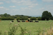 View across farm land near Gorse Covert, Warrington